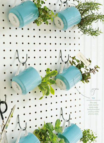 indoor herb planters out of mugs