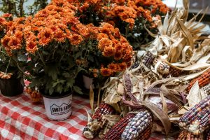 harvest decor ideas