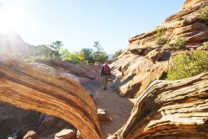 family hikes st george utah